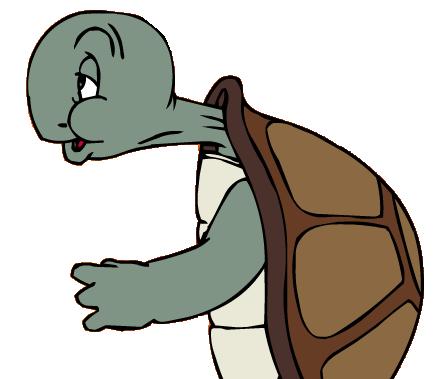 neck pain turtle posture