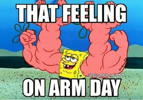 arm day